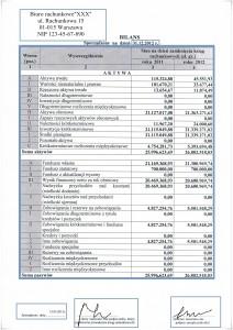 bilans-firmy